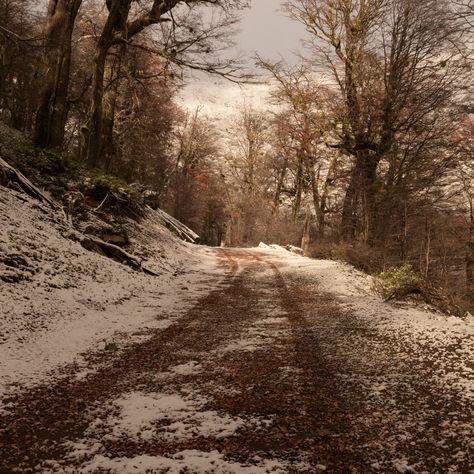 Camino al C Lopez