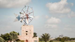 windmills4.jpg