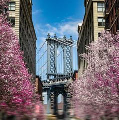 manhattan_bridge_spring.jpg