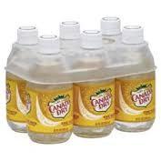 10oz Bt Canada Dry Tonic Water 24pk