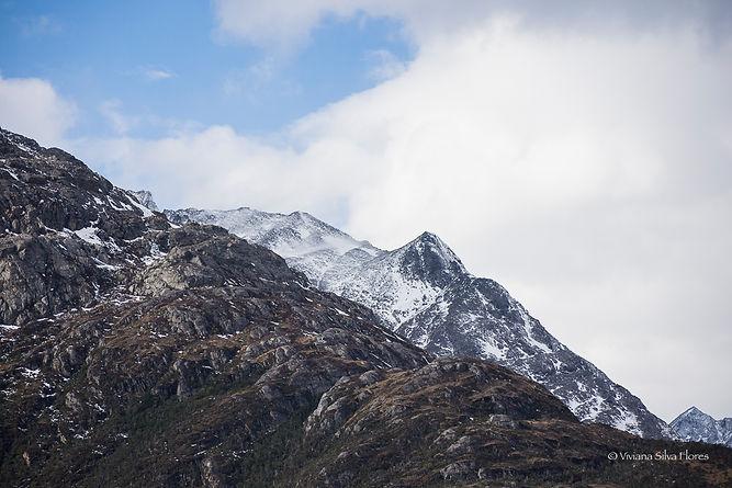 Proyecto Cordillera II-11.jpg