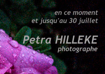 Hilleke-Site accueil  copier.jpg
