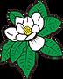 Heritage Florist Magnolia.png