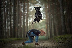 Flying dog into a fairy tale