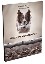 Guide-post-processing-3-BOOK---2019-ENGL