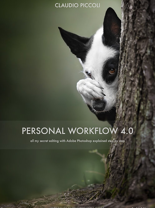 "Book ""Personal Workflow 4.0"" ENGLISH"