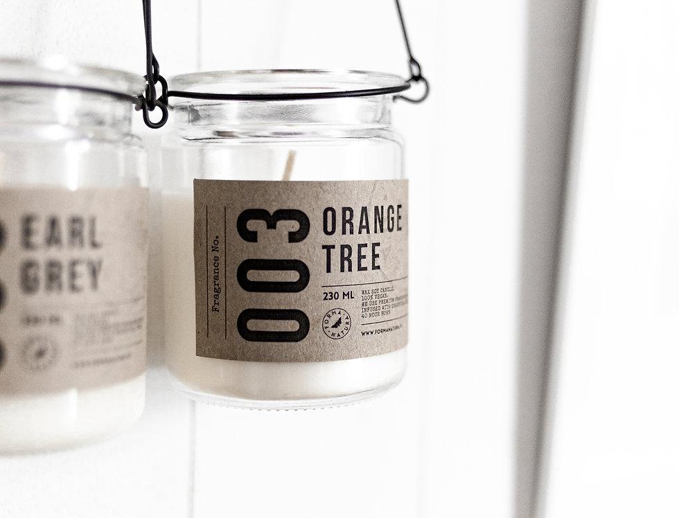 "Świeca No. 003 ""Orange tree"""