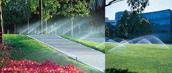 irrigation-01.jpg