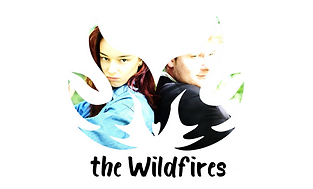Logo the Wildfires