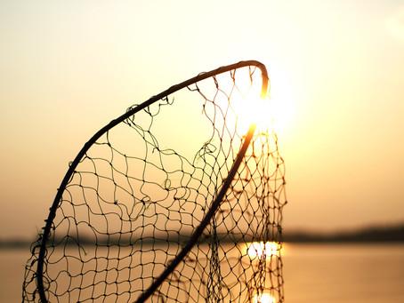 The Broken Net