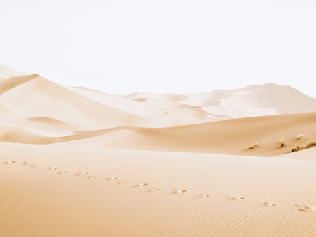 When Egypt Bit the Dust