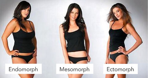 Ectomorph, Endomorph and Mesomorph: How to Train For Your