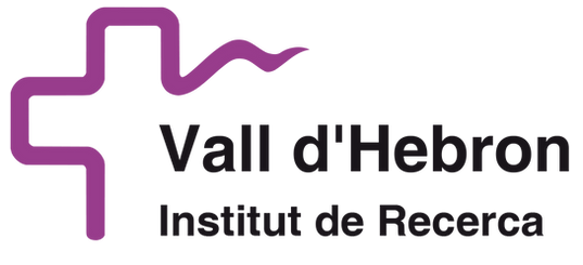 Gallery of Ideas Corporate Training for Vall D'Hebron