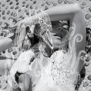 220px-Björk_-_Vespertine_album_cover.png