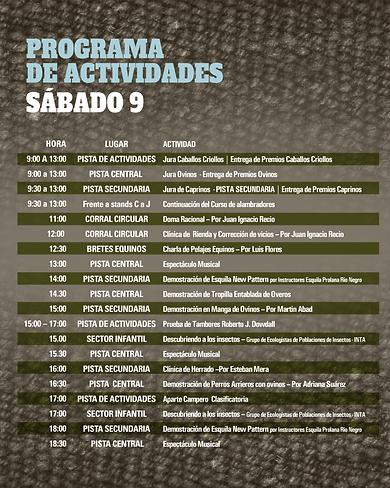 programa-WEB-22.png