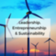 Leadership, Entrepreneurship and Sustain