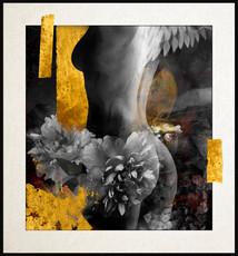 Wings of Desire.jpg