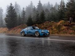 Blue EVOMAX standing in rainy forest.jpg
