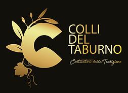 OK DEF LOGO COLLI DEL TABURNO-01.png
