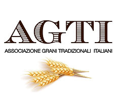 OFFICIAL LOGO AI AGTI-01.jpg