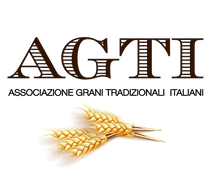 OFFICIAL LOGO AI AGTI-01.png