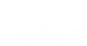 DLLOGOWHITE1.png