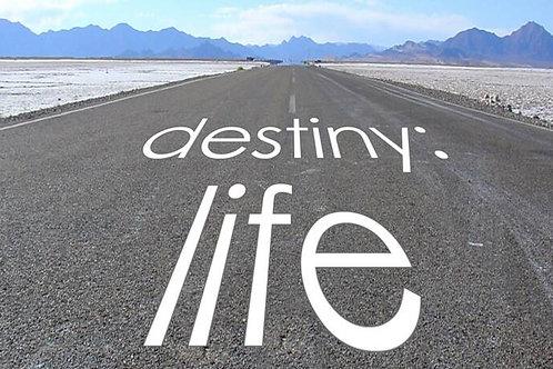 Signs & Symptoms of Destiny