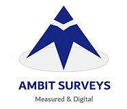 blue triangle - company logo - Ambit Surveys
