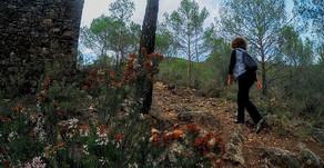 Fin de semana de senderismo en la Sierra de Espadán, en Sueras, Castellón
