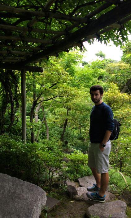 Pese a la cantidad de edificios, la vegetación también está presente en Tokio
