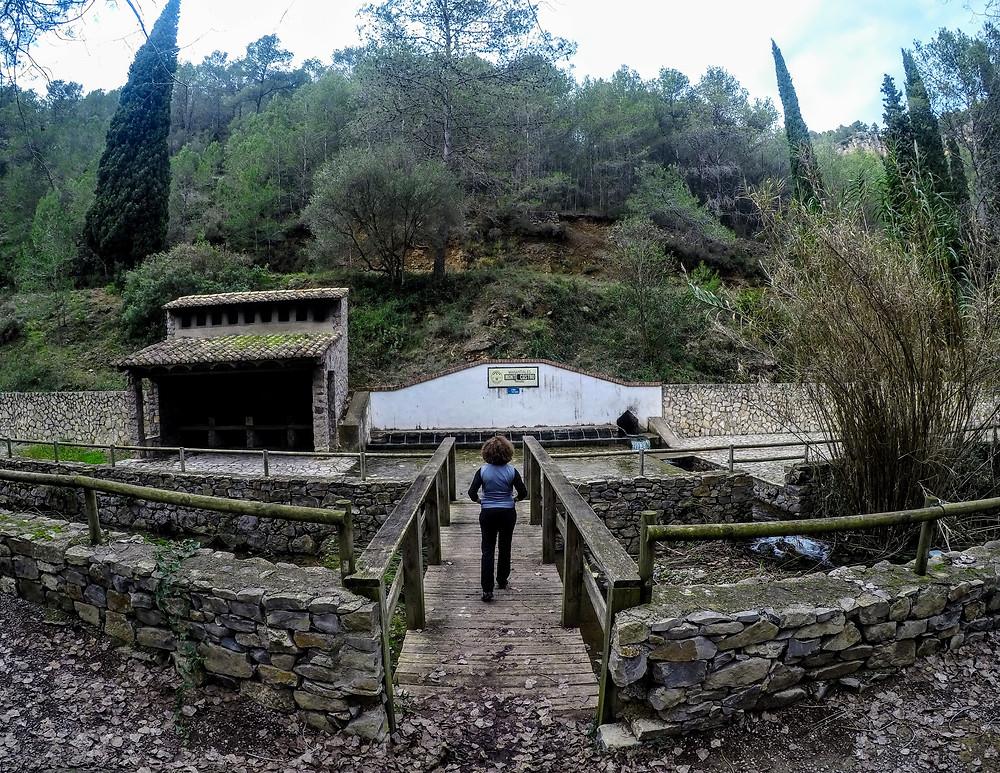 Fuente de Castro, Sueras