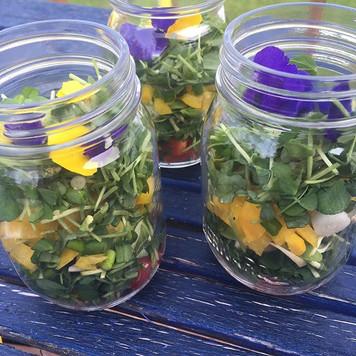 My layered microgreen salad reminds me o