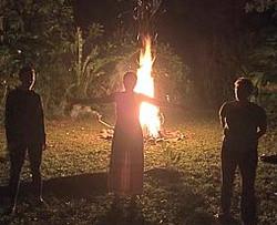 Magical Bonfire