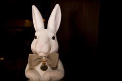 Mariage-Sylvie-Patrice Le lapin blan