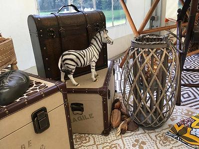 Safari Afrique du Sud (7).jpg