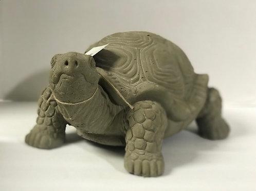 Large Garden Turtle