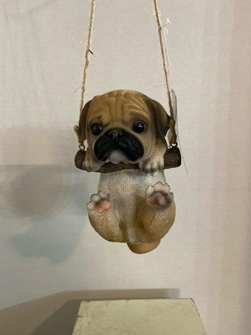 Swinging Pug Puppy
