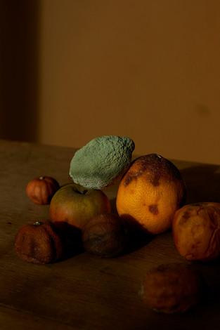 Fruits d'hiver