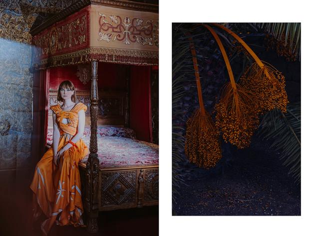 Les 5 dames à Chenonceau