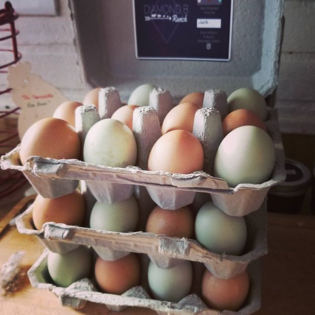 Farm fresh eggs. Hand gathered daily.