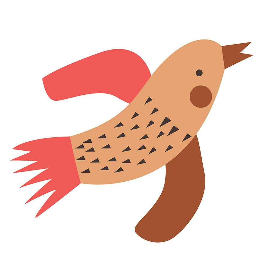 Bird Illustration Detail