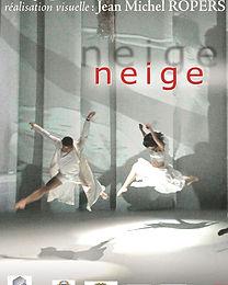 10A-2006-2004 Neige écarlate-affd-f40X60