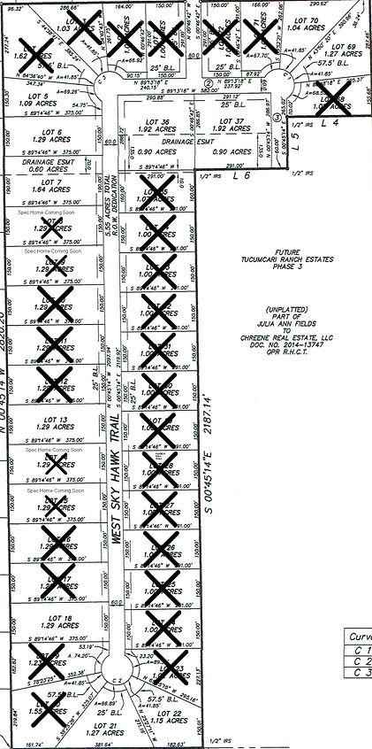 Tucumcari Phase 2 Plat 1-18-21.jpg