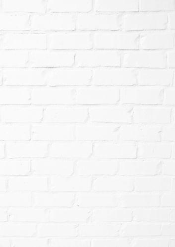 white-brick-wall-screenshot-1-_edited_edited_edited_edited.jpg