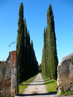 Vialetto d'Accesso, Tivoli