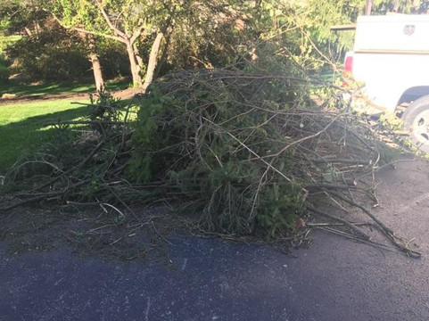 yard clean up indianapolis