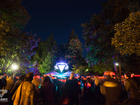 Silent Discos return to front of park!