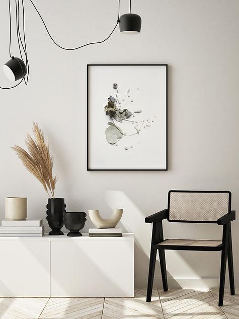 home-collection-al.jpg