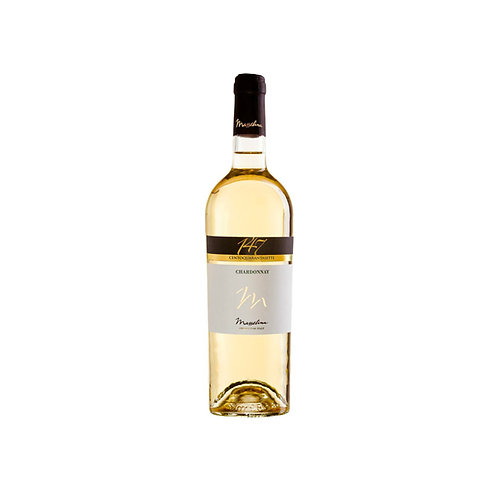 GEWURZTRAMINER KENDERMANNS DOC 75 CL