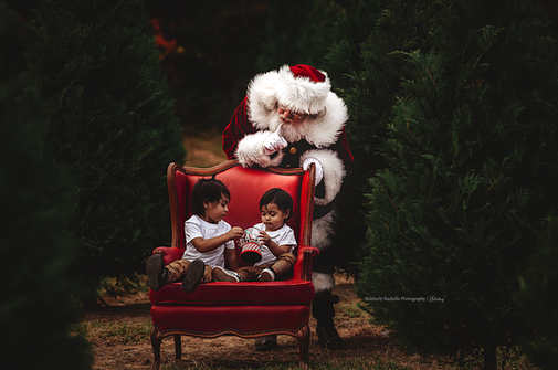 pictures with santa the woodlands tx